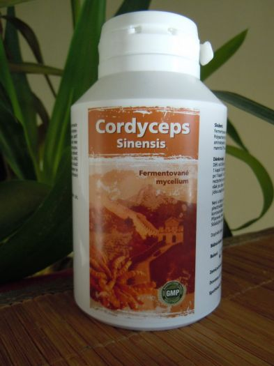 Naturgreen Cordyceps 120 ks, 500mg